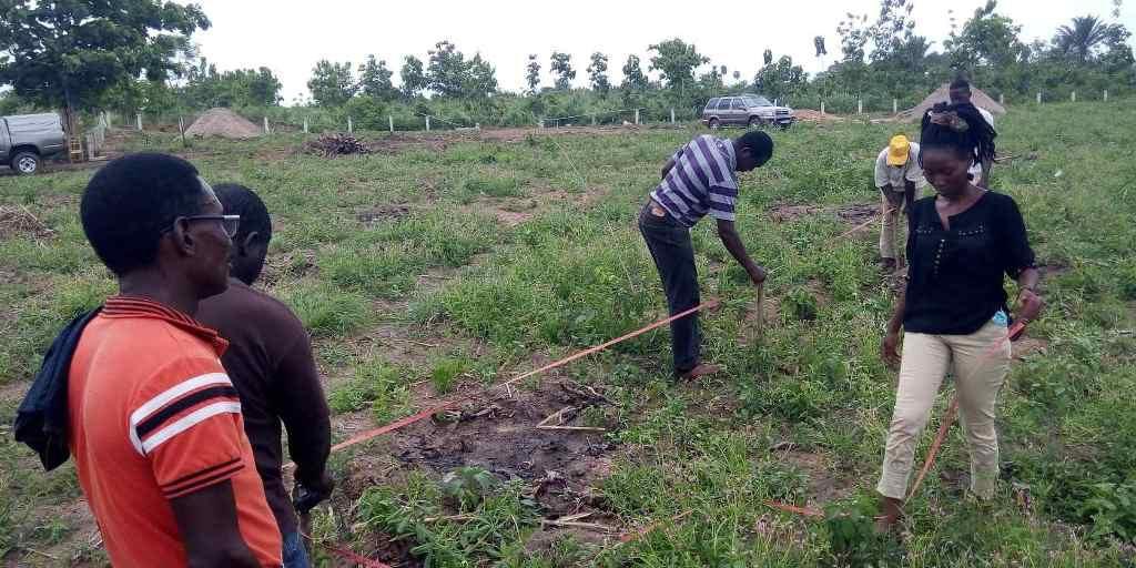 Implantation au sol