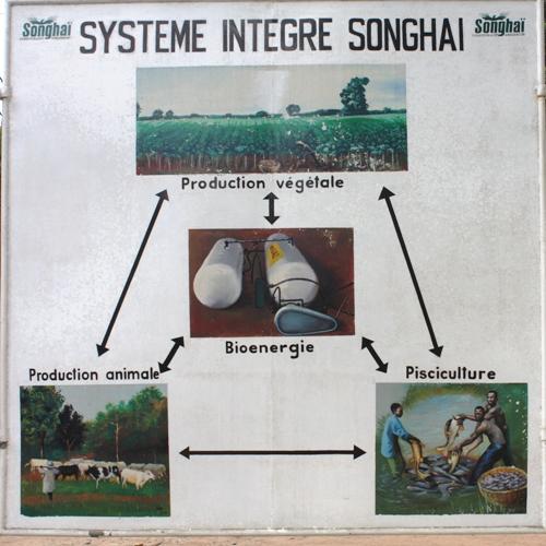 Système intégré Songhai