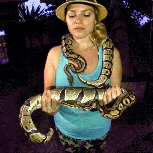 Pythons Ouidah