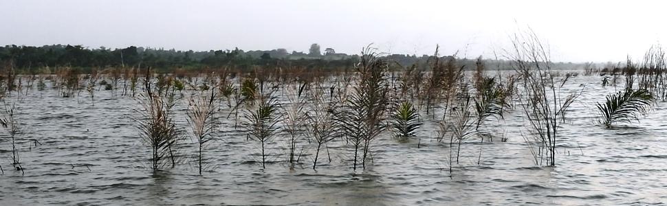 Aquarium lac Ahémé Bénin