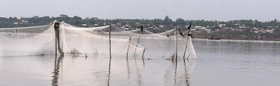 Nasse poissons lac Ahémé
