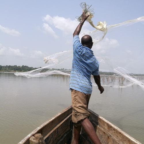 Pêche à l'épervier Bénin