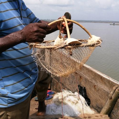 Pêche au crabe Bénin